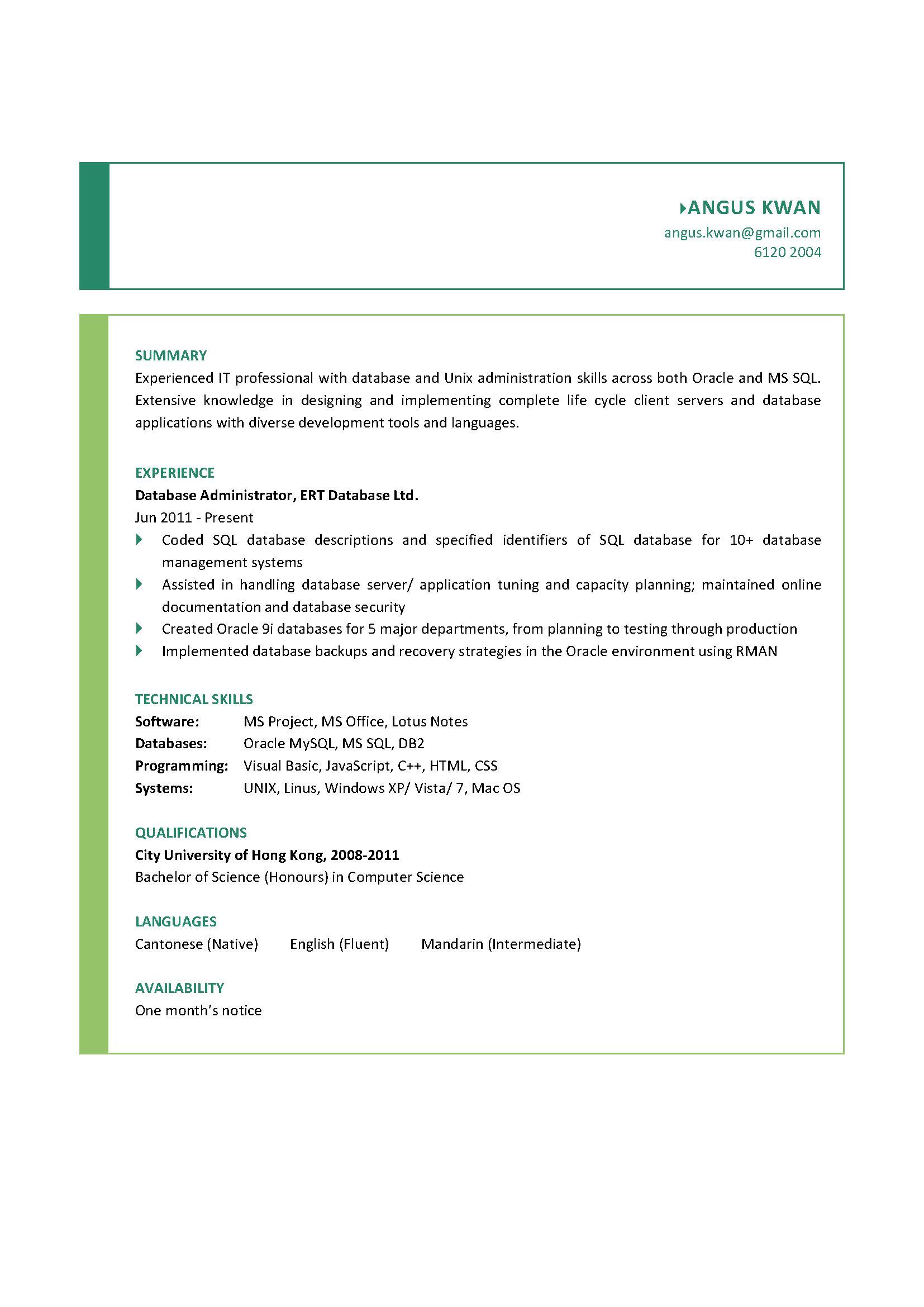Database Administrator CV
