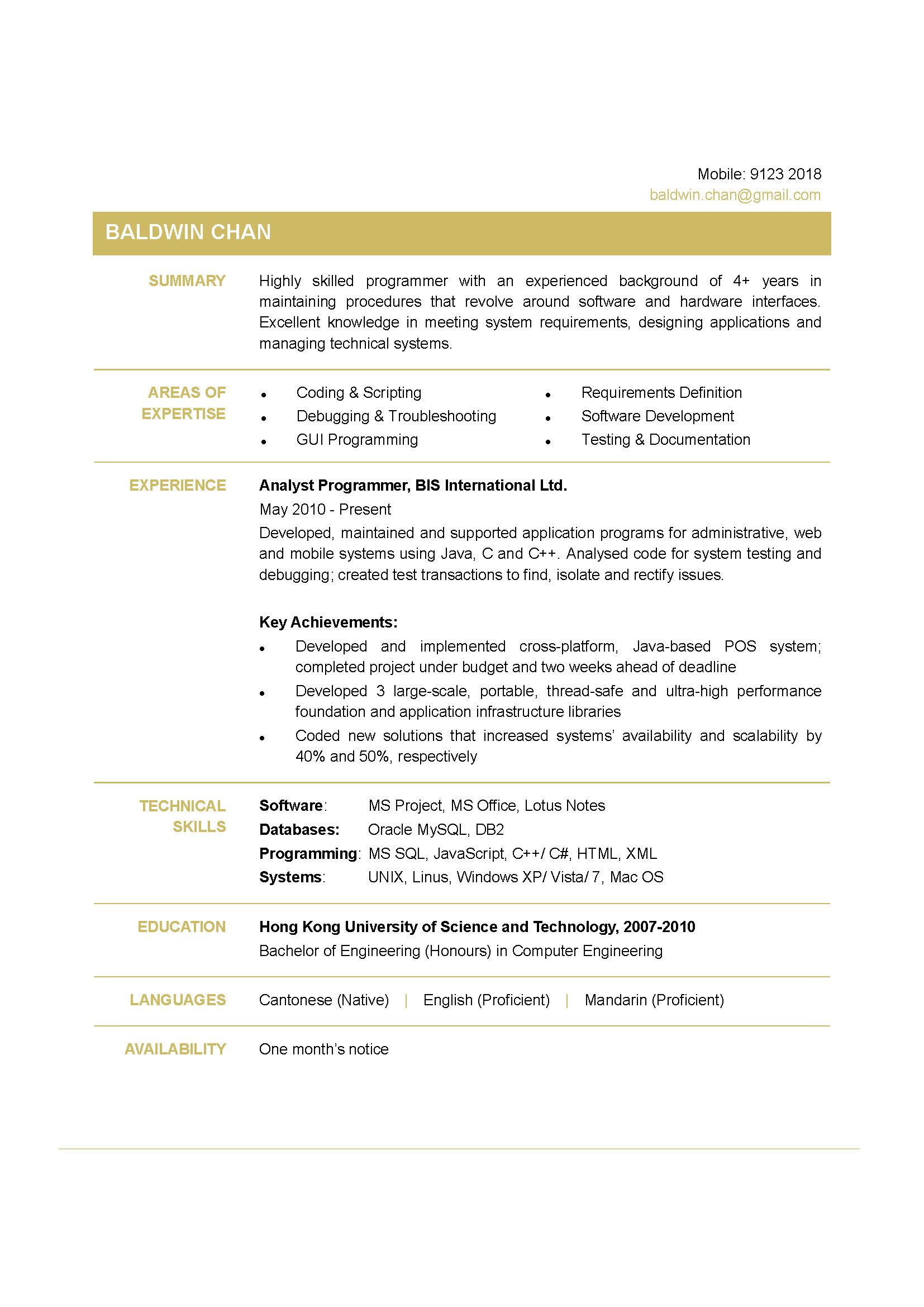 Programmer CV