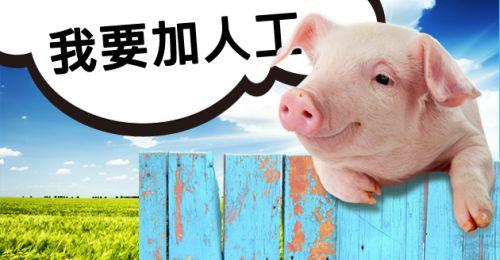 港豬傾人工】5大「蝕章」位- CTg...