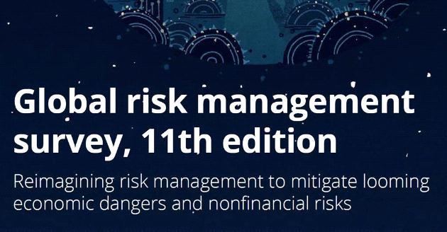 Global Risk Management Survey 2019
