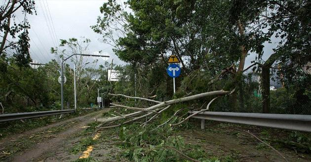超強颱風後的「極端情況」