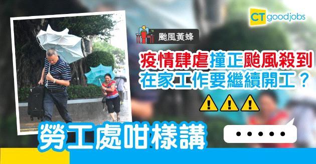 【颱風黃蜂】若懸掛八號風球  在家工作都要照開工?