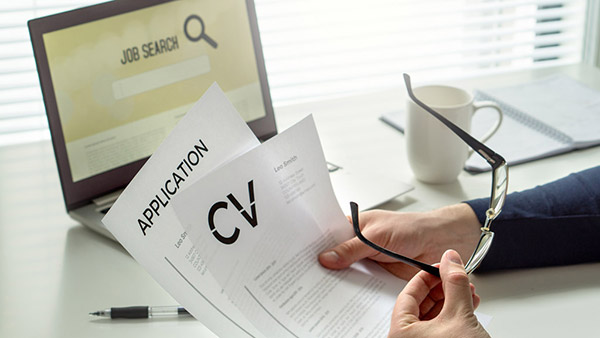 audit officer cv