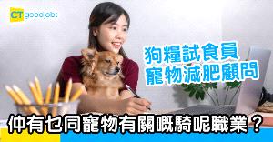 【職場熱話】鍾意寵物可以選擇甚麼職業?